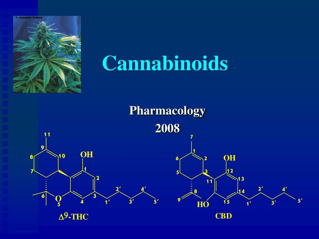 cannabinoids l.