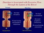 diarrhea is associated with excessive flow through the lumen of the bowel