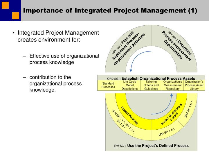 Importance of integrated project management 1