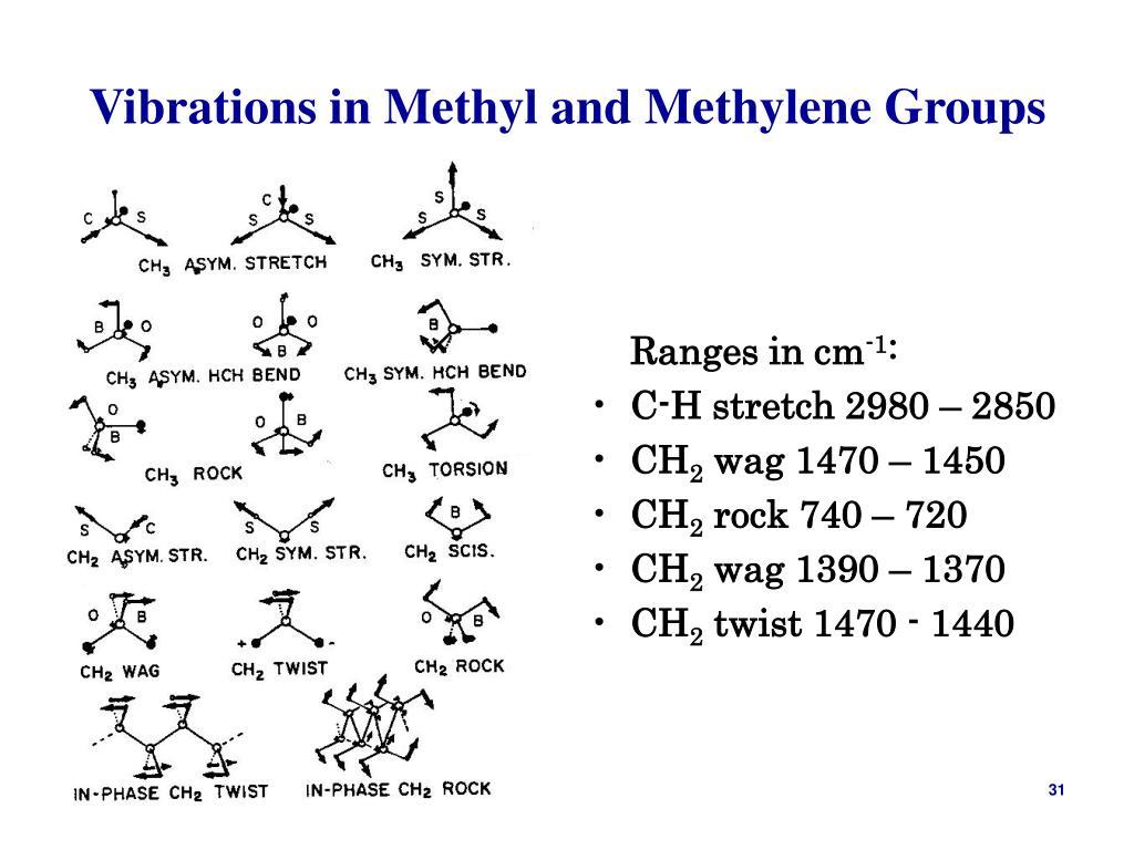 Vibrations in Methyl and Methylene Groups