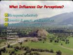 what influences our perceptions