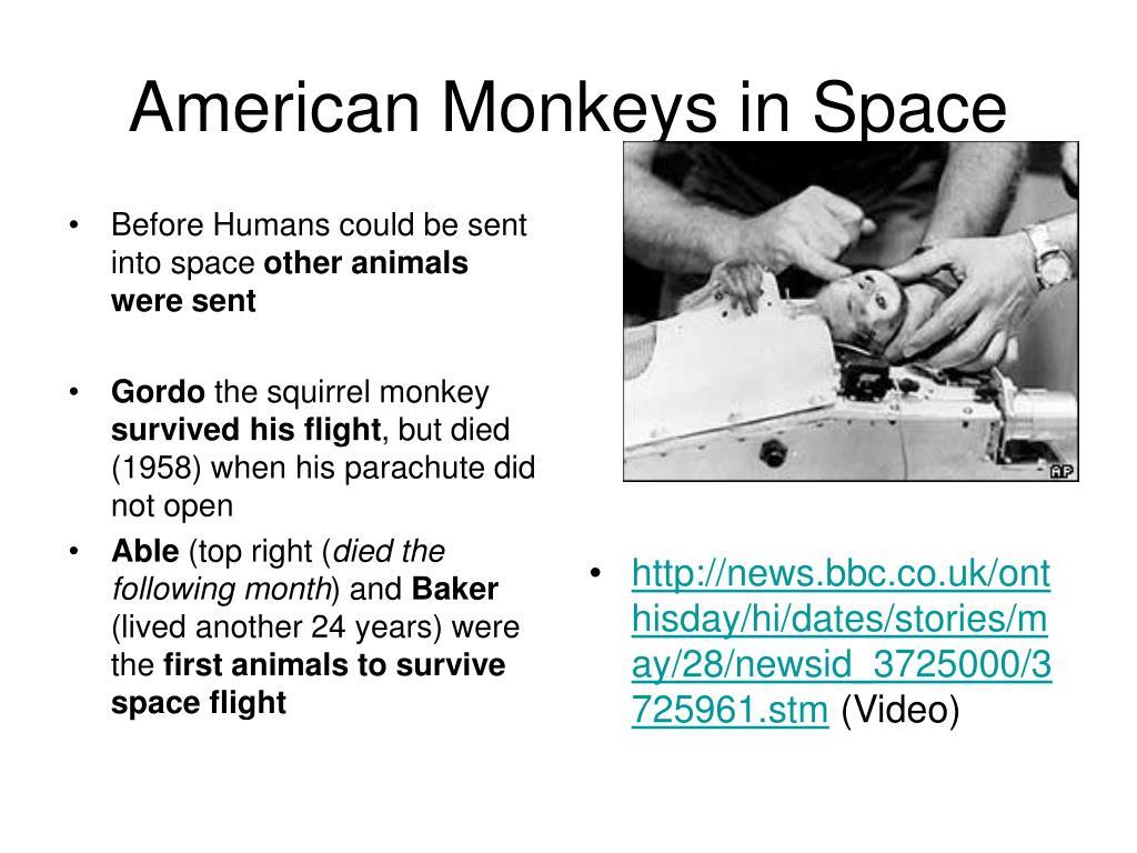 American Monkeys in Space
