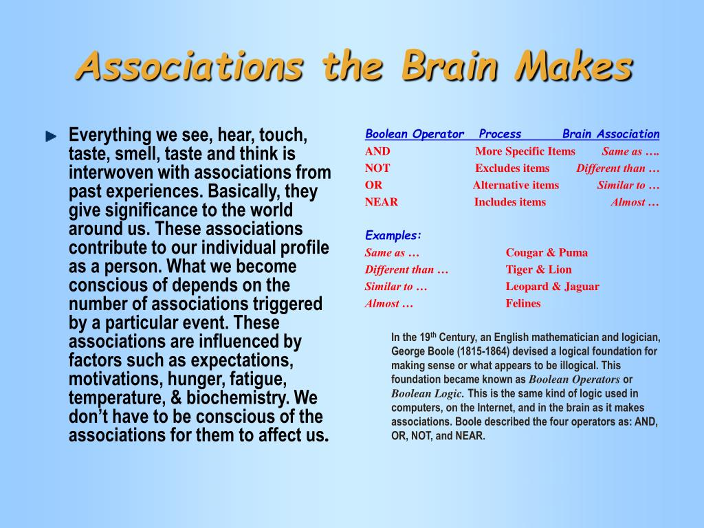Associations the Brain Makes