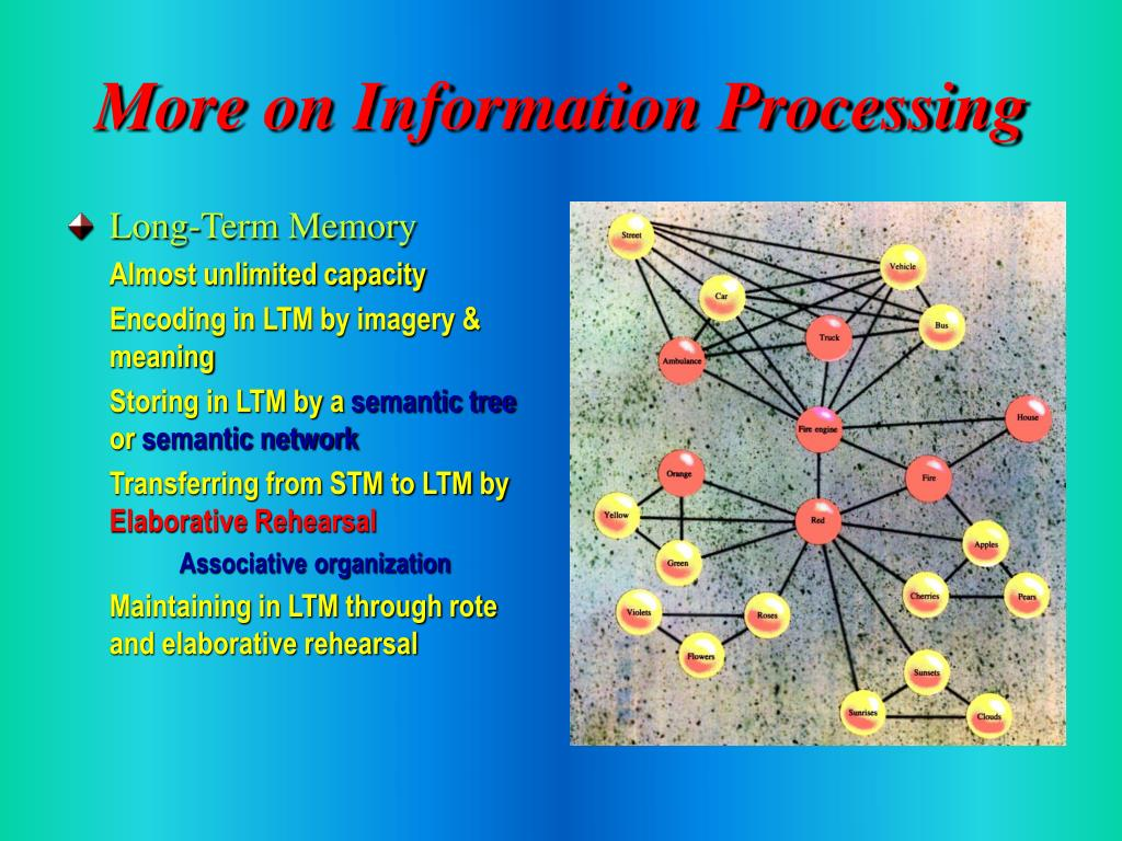 More on Information Processing