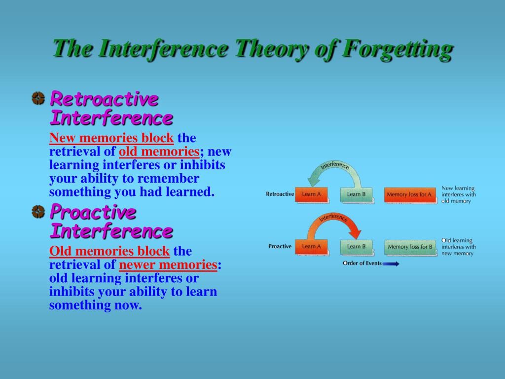 The Interference Theory of Forgetting
