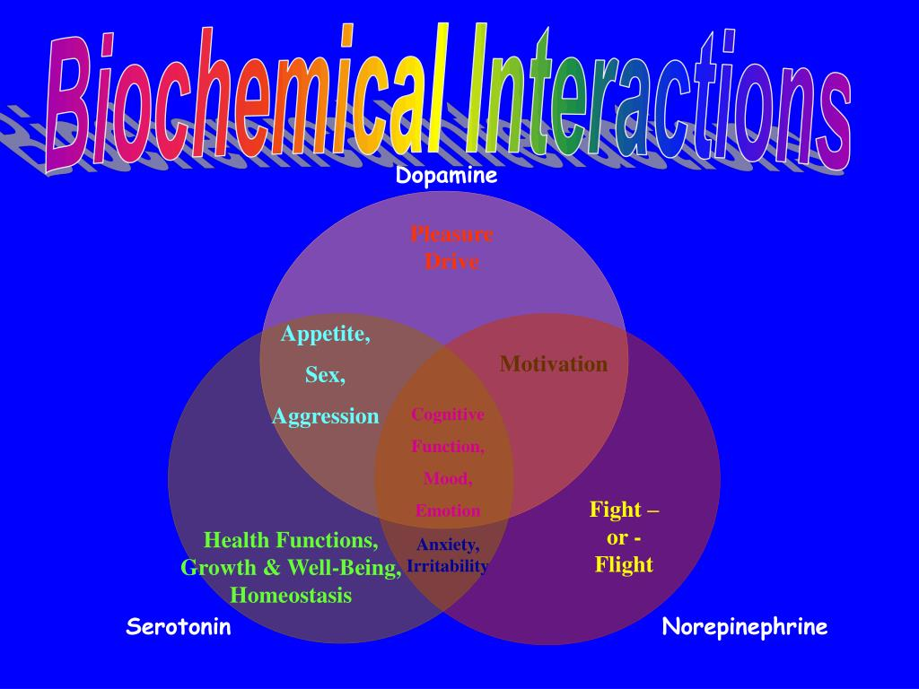 Biochemical Interactions