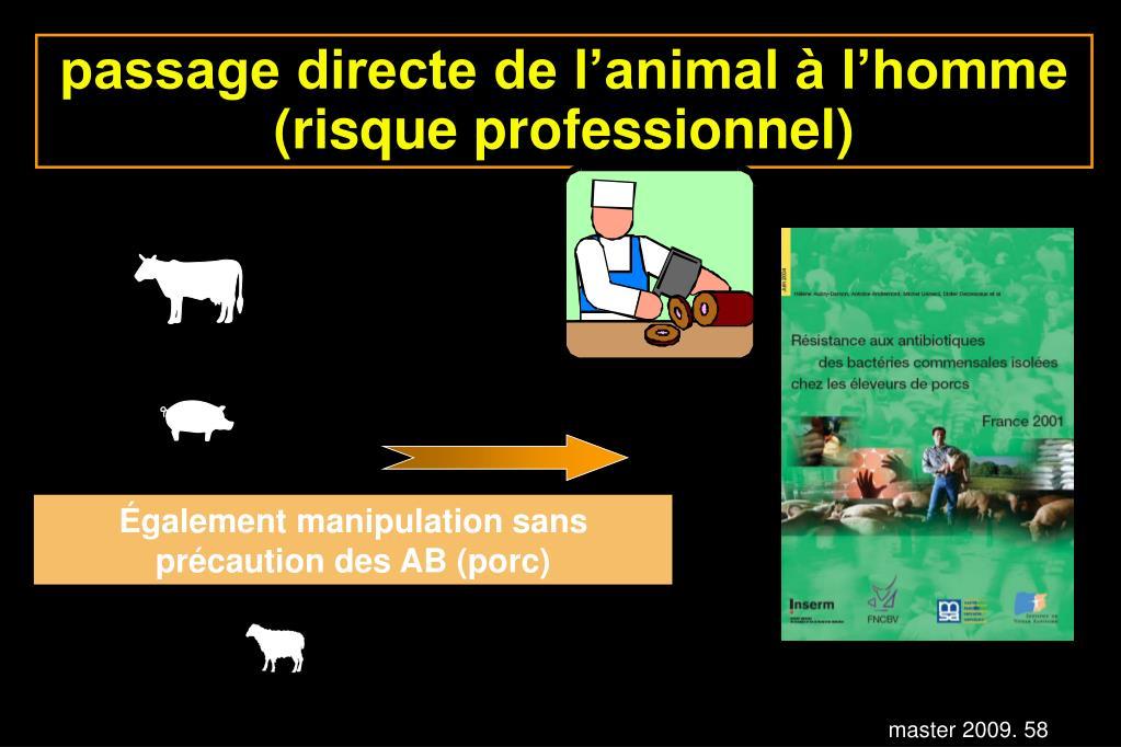 passage directe de l'animal à l'homme