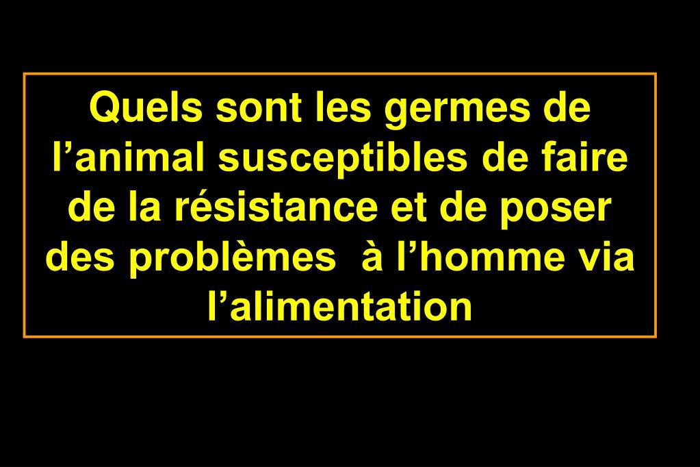 Quels sont les germes de l'animal susceptibles de faire de la résistance et de poser des problèmes  à l'homme via l'alimentation