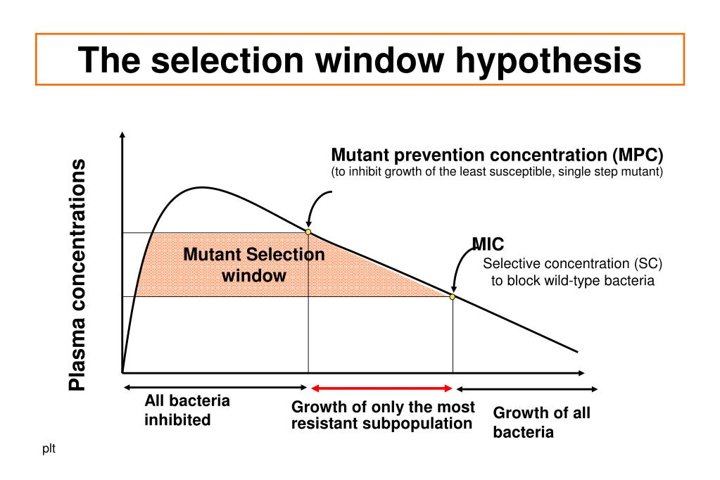 The selection window hypothesis