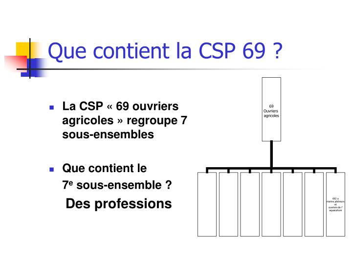 Que contient la CSP 69 ?