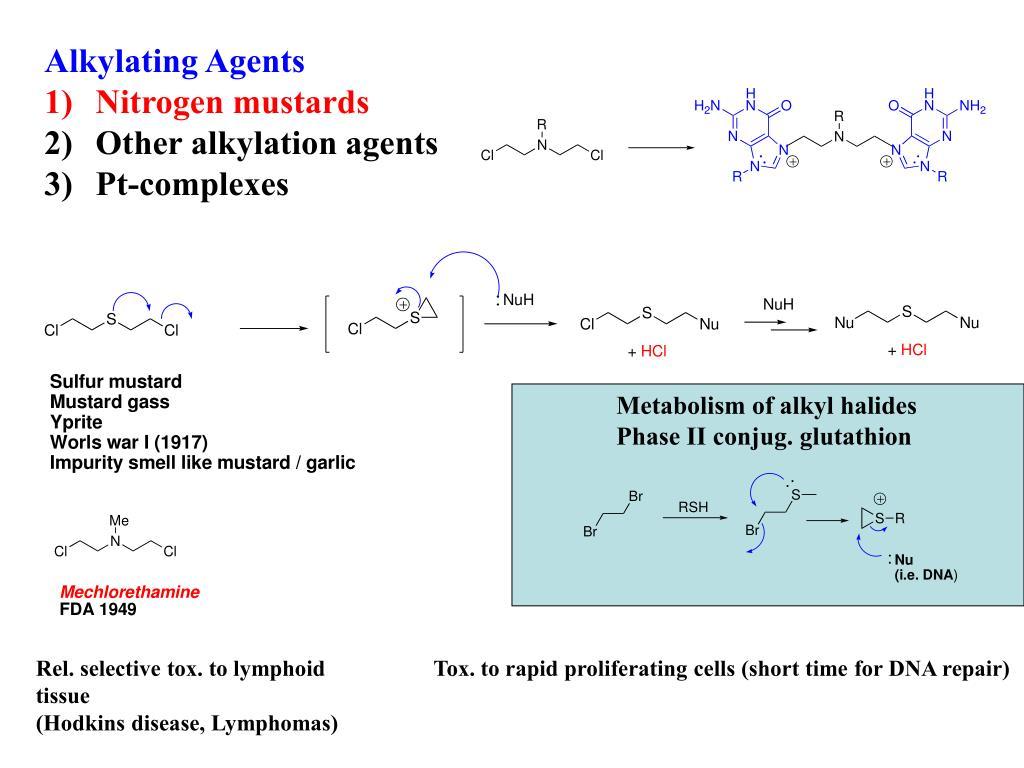Alkylating Agents