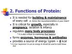 2 functions of protein