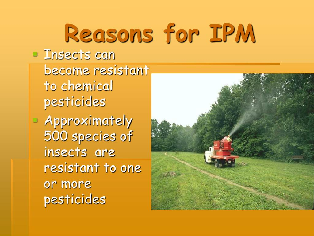 Reasons for IPM