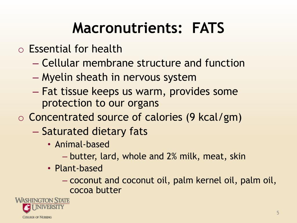 Macronutrients:  FATS