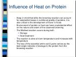 influence of heat on protein33