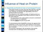 influence of heat on protein46