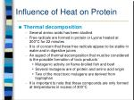 influence of heat on protein47