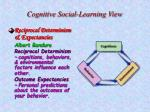 cognitive social learning view27