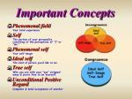 important concepts21