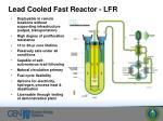 lead cooled fast reactor lfr