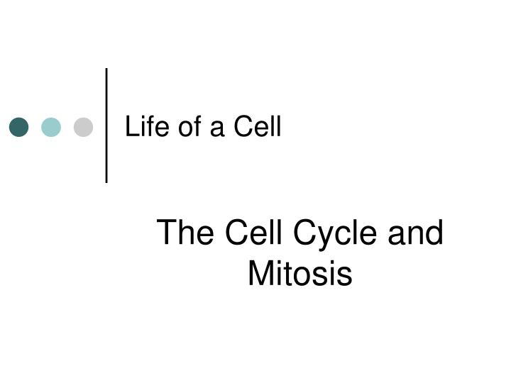 life of a cell n.