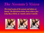 the neonate s vision