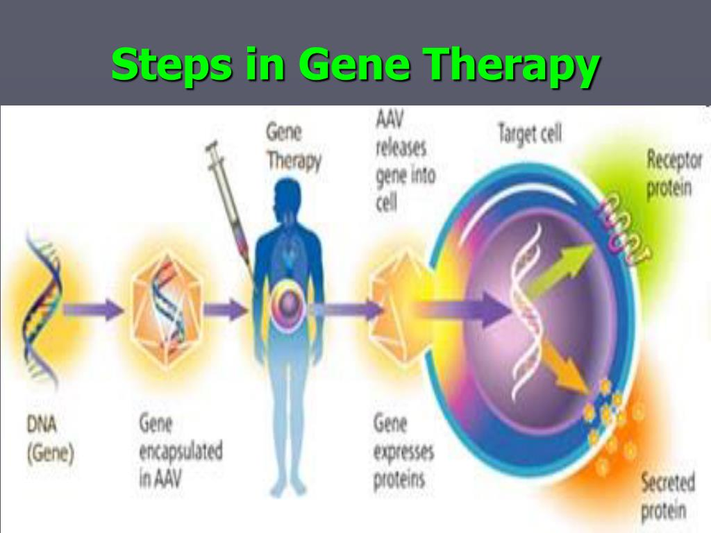 Steps in Gene Therapy
