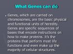 what genes can do
