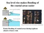 easier flooding of coastal areas during typhoon attack or heavy rain