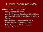 cultural features of sudan16