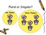 plural or singular