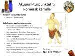 akupunkturpunktet til romersk kamille