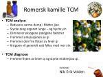 romersk kamille tcm