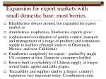 expansion for export markets with small domestic base most berries