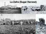 la zafra sugar harvest