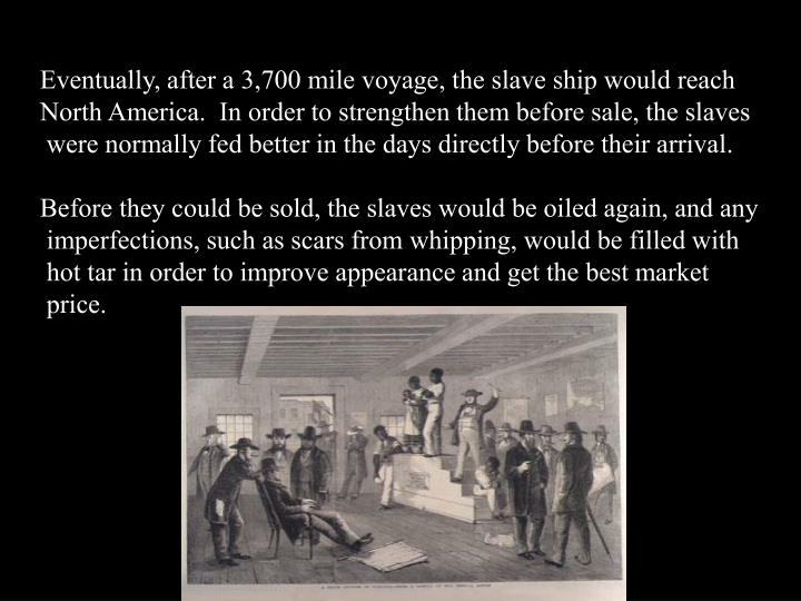 Eventually, after a 3,700 mile voyage, the slave ship would reach