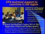efa technical support to countries in the region