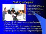 g uiding principles