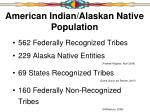 american indian alaskan native population