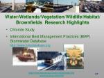 water wetlands vegetation wildlife habitat brownfields research highlights