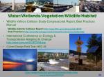 water wetlands vegetation wildlife habitat