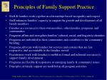 principles of family support practice