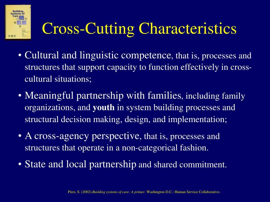 Cross-Cutting Characteristics