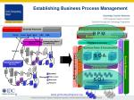 establishing business process management