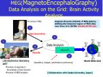 meg magnetoencephalography data analysis on the grid brain activity analysis