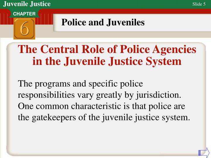future of the juvenile justice system presentation and paper Free juvenile justice system  this paper examines the juvenile justice system's court  reaction to current juvenile delinquency and deterrence of future.