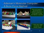 adleman s molecular computer a brute force method