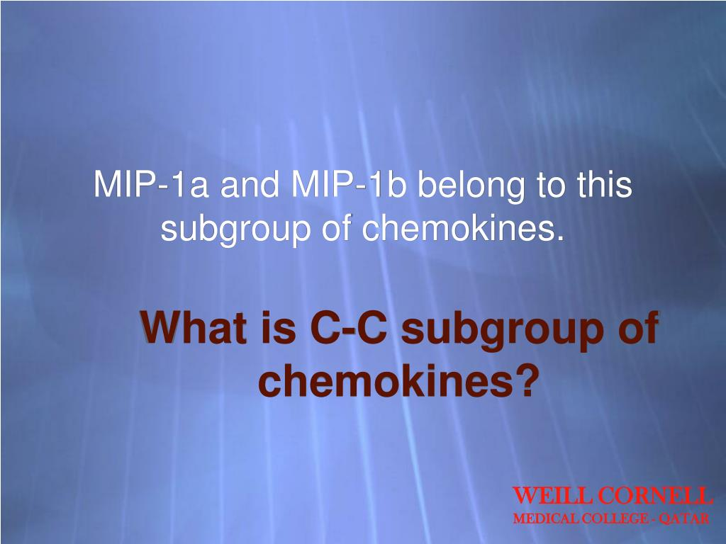 MIP-1a and MIP-1b belong to this subgroup of chemokines.