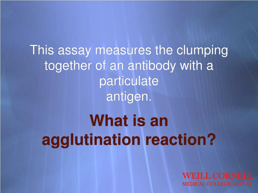 This assay measures the clumping together of an antibody with a particulate
