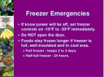 freezer emergencies